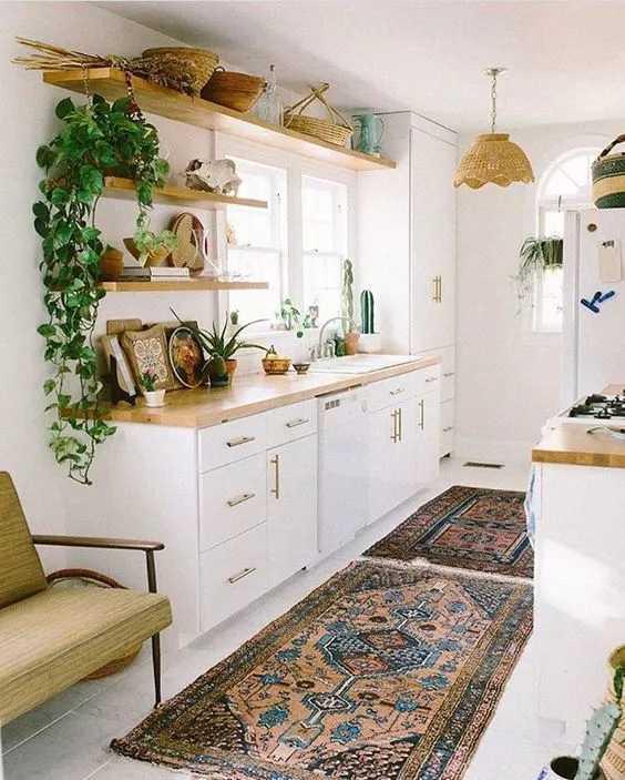 这些植物养在厨房,油烟再多都不怕!